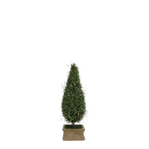 Artificial Topiary Trees, Spiral Topiary, P1219C3  3 Feet Cone Shape Oregano In Square Clay Pot