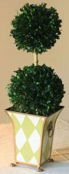 Double Ball in Boxwood Topiary Foliage