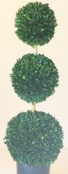 "60"" Triple Ball Boxwood Topiary"