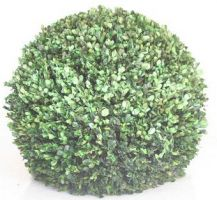 "20"" Boxwood Ball"