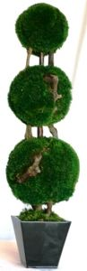 26 inch   Triple Moss Topiary