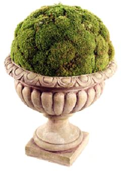 Decorative Moss Display