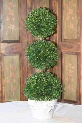 "30"" Triple Ball Preserved Boxwood"