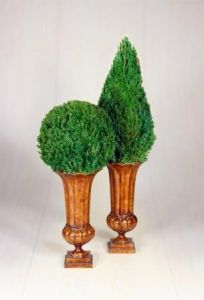 Mantle Top Cone Topiary in Juniper