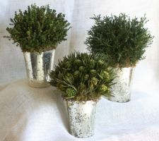 Desiray Garden Vases (Set of Three)