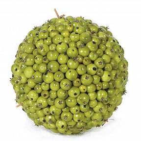 5 and 5 Inch Green Berry Ball