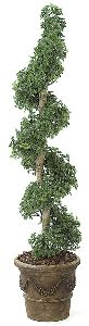 Artificial Topiary Trees, Spiral Topiary, 6 feet   Ming Aralia Spiral Topiary