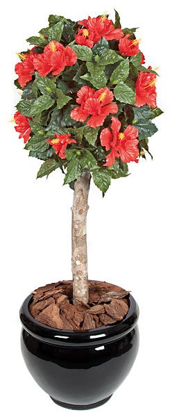 3.5 Foot  Hibiscus Ball Topiary