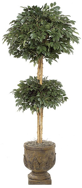 6 Foot Sakaki Double Ball Tree