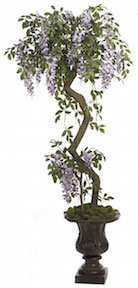 5 Foot Wisteria Topiary