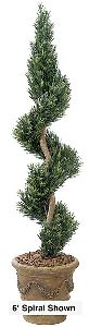 Artificial Topiary Trees, Spiral Topiary, 48 inch Podocarpus Spiral Topiary