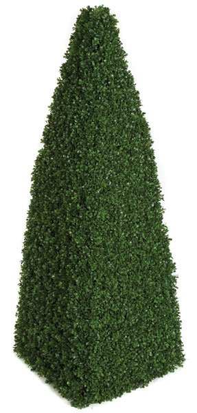 48 Inch Boxwood Pyramid Topiary