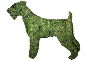 Airedale, 32 inch (Mossed) 32 inch  x 42 inch  x11 inch