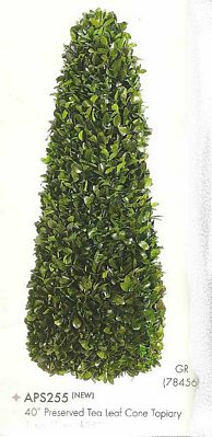 40 inch Preserved Tea Leaf Cone Topiary Green