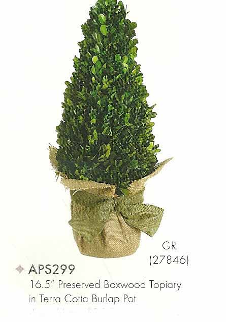 16 and 5 inch Preserved Boxwood Topiary in Terra Cotta Burlap Pot Green