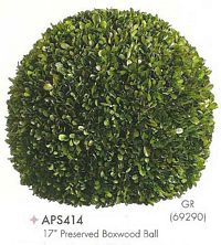 17 inch Preserved Boxwood Ball Green