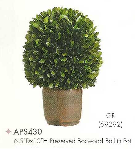 6 and 5 inch Dx10 inch H Preserved Boxwood Ball in Pot Green