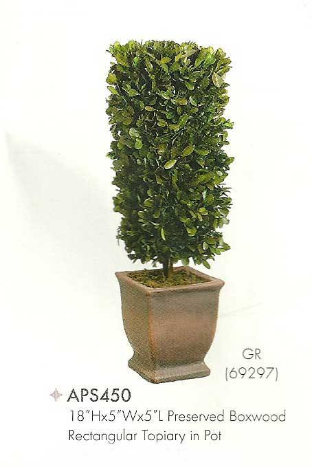 18 inch Height by 5 inch Wx5 inch L Preserved Boxwood Rectangular Topiary in Pot Green
