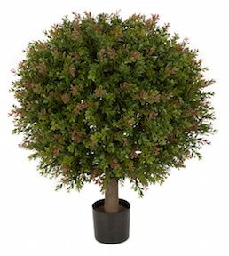 24 Inch  Wintergreen Boxwood Ball Topiary