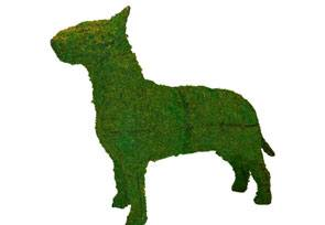 Bull Terrier, 27 inch   (Mossed) 27 inch  x 33 inch  x 11 inch