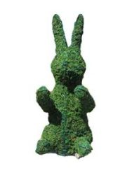 Bunny Sitting Upright Moss Topiary 24 inch Tall