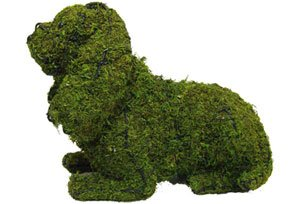 Cat Lying, 10 inch   (Mossed) 10 inch  x 15 inch  x 9 inch