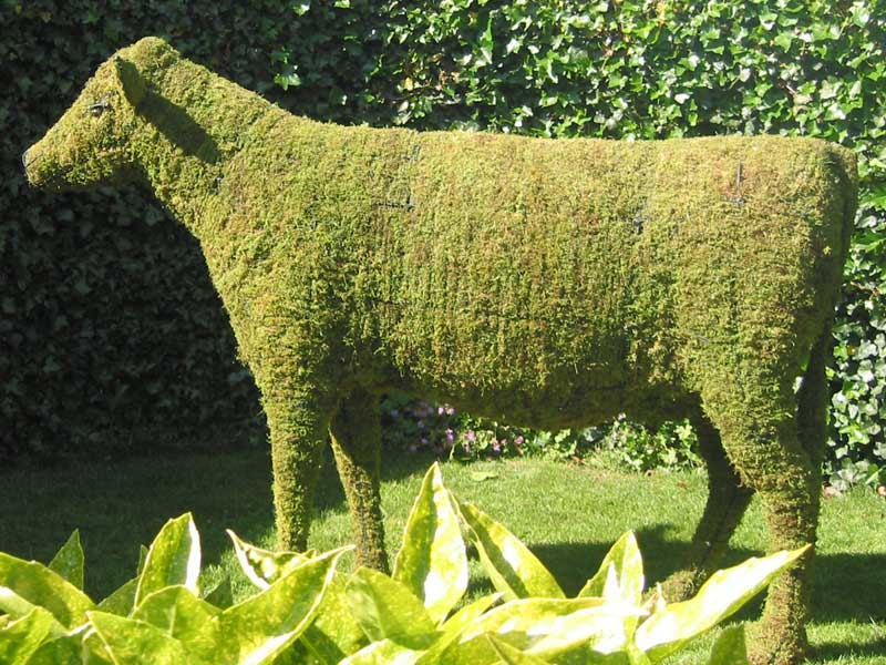 Cow, 24 inch Tall  (Mossed)