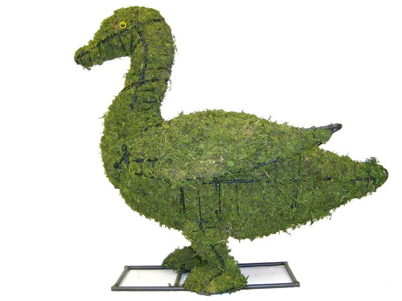 Duck, 19 inch  (Mossed) 19 inch  x 21 inch  x 11 inch