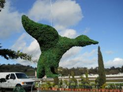 Flying Duck Frame Topiary with Moss 13 inches tall