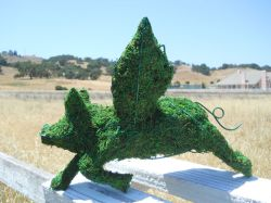 Flying Pig Frame Topiary with Moss 12 inches tall