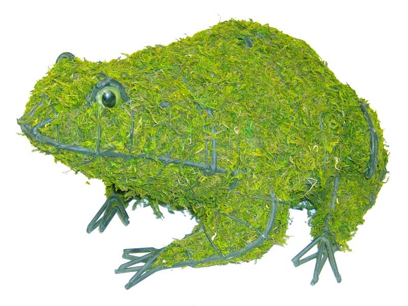 Frog, 4 inch  (Mossed) 4 inch  x 9 inch  x 8 inch