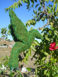 Hummingbird Frame Topiary with Moss 15 inches tall