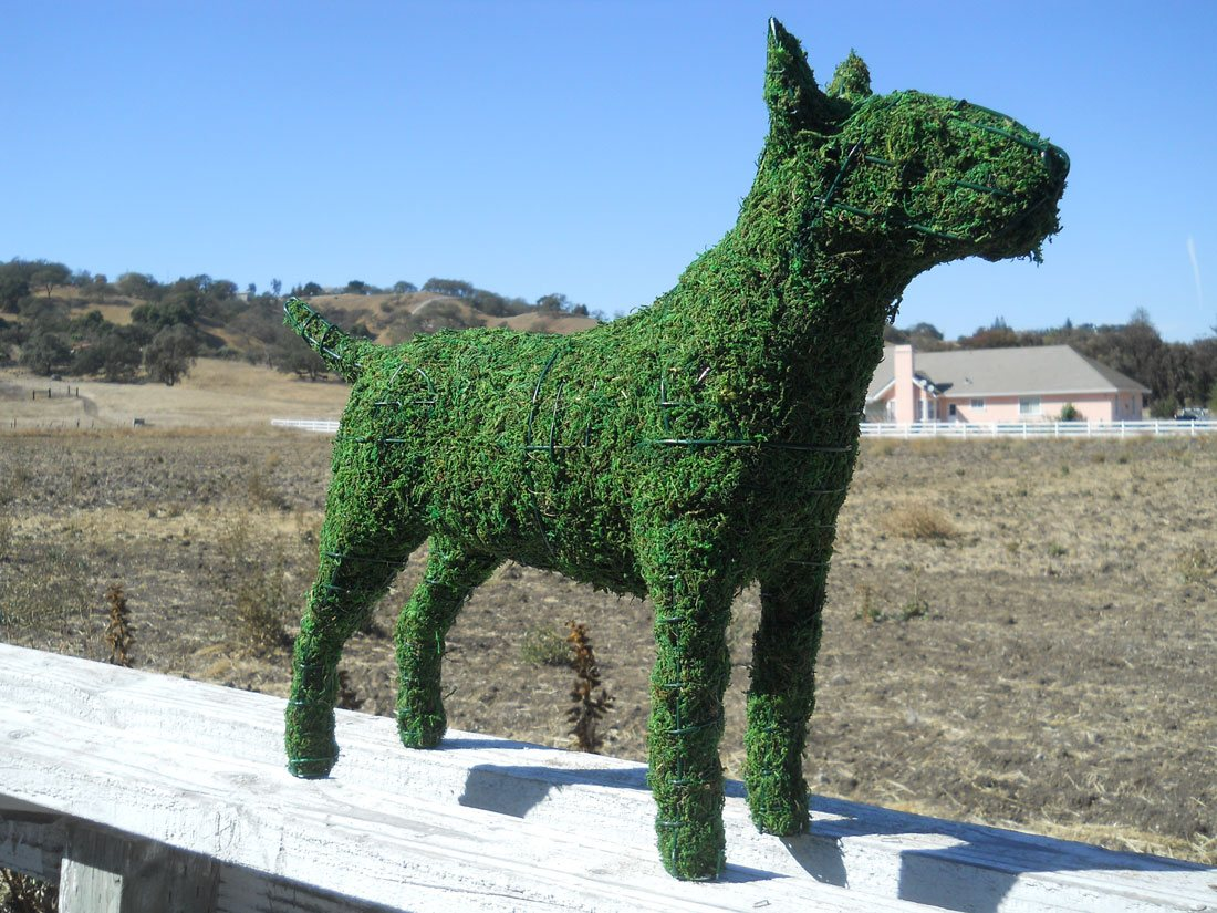 Hunting Dog Frame Topiary with Moss 17 inches tall