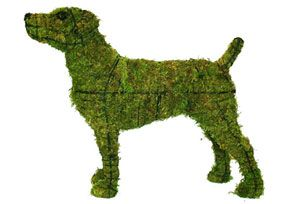 Jack Russell, 14 inch  (Mossed) 14 inch  x 22 inch  x 7 inch