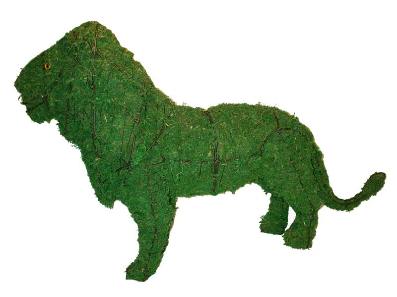 Lion, 25 inch  (Mossed) 25 inch  x 37 inch  x 12 inch