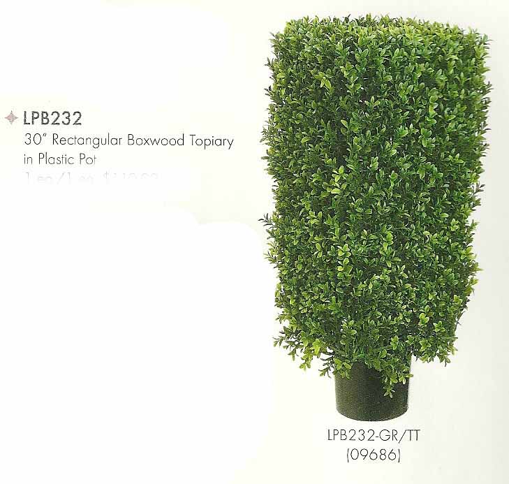 30 inch Rectangular Boxwood Topiary in Plastic Pot Two Tone Green