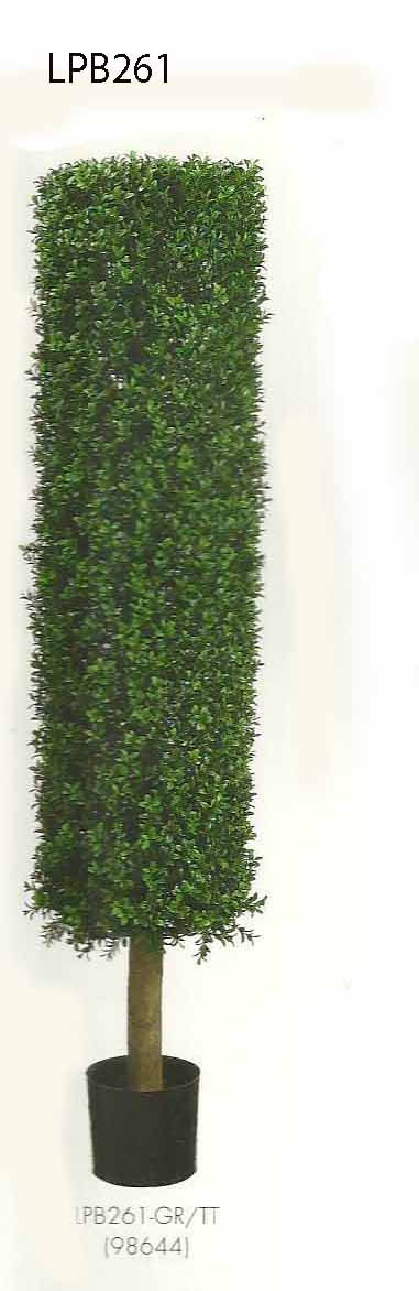 4.5 feet Round Boxwood Topiary in Plastic Pot Two Tone Green