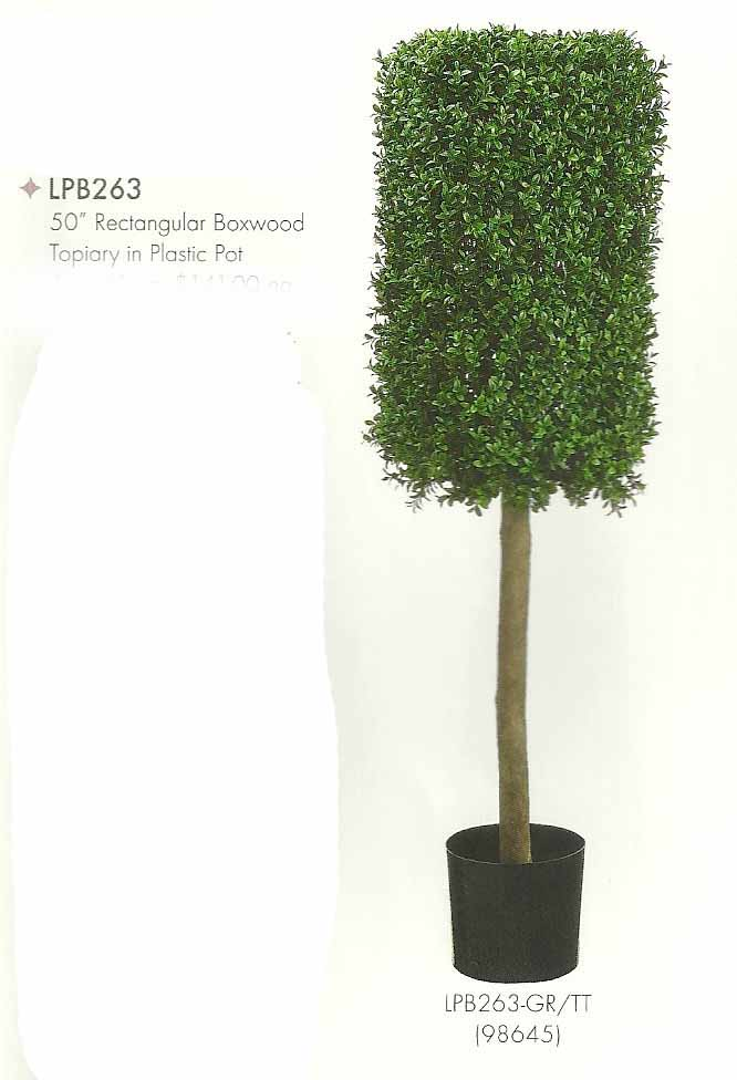 50 inch Rectangular Boxwood Topiary in Plastic Pot Two Tone Green