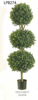 4 feet Triple Ball Shaped Boxwood Topiary in Plastic Pot Two Tone Green