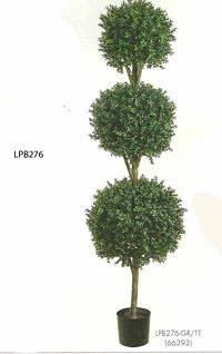 6 feet Triple Ball Shaped Boxwood Topiary in Plastic Pot Two Tone Green
