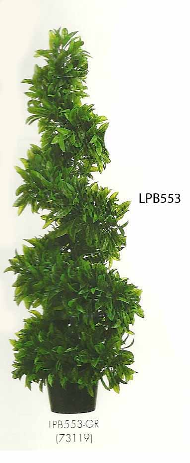 3 feet Italian Bayleaf Spiral Topiary in Black Plastic Pot Green