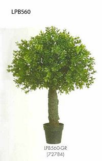 22 inch Boxwood Ball Topiary in Plastic Pot Green