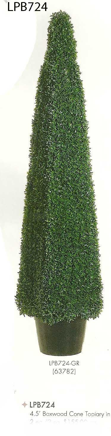 4 and 5 feet Boxwood Cone Topiary in Plastic Pot Green