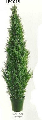 60 inch Cedar Topiary x1565 with Pot (Knockdown Packing) Green