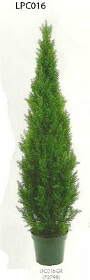 72 inch Cedar Topiary x2492 with Pot (Knockdown Packing) Green