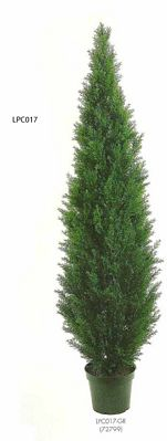84 inch Cedar Topiary x3610 with Pot (Knockdown Packing) Green