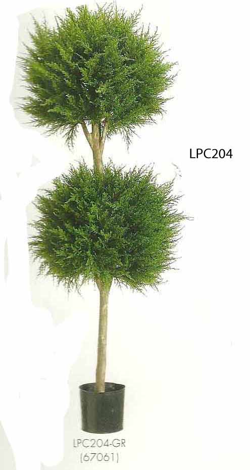 4 feet Canadian Cypress Double Ball Topiary in Pot Green