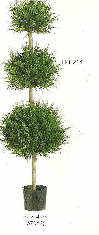 4 feet Canadian Cypress Triple Ball Topiary in Pot Green