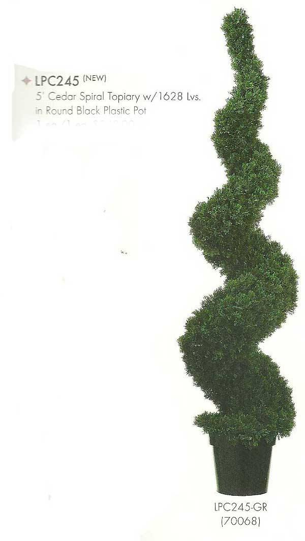 5 feet Cedar Spiral Topiary with 1628 leaves in Round Black Plastic Pot Green
