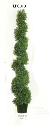 3 feet Spiral Cedar Topiary in Plastic Pot Green
